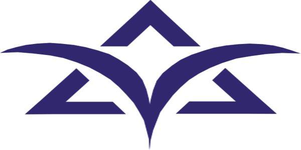 תסקיר שירות מבחן - משרד הרווחה והשירותים החברתיים