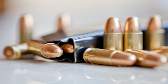 האם מותר להחזיק תחמושת או חלקים מנשק?