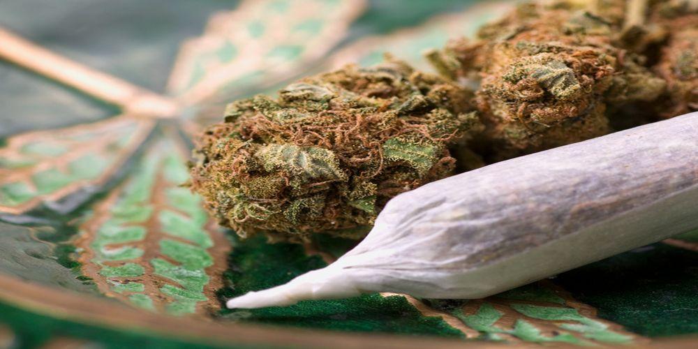 פקודת הסמים המסוכנים – היסטוריה והגדרות
