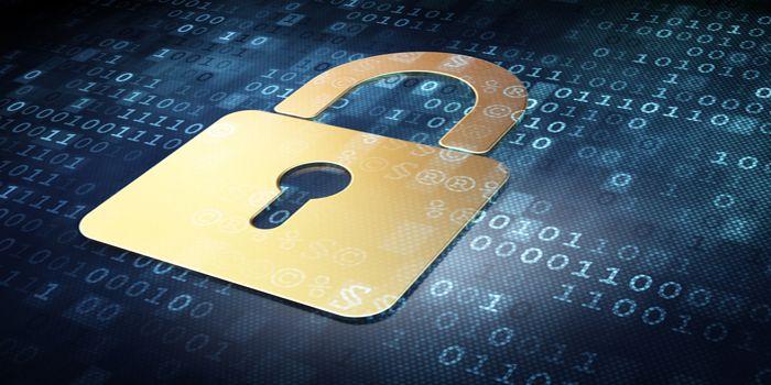 פגיעה בפרטיות באינטרנט | הגנה על הפרטיות באינטרנט
