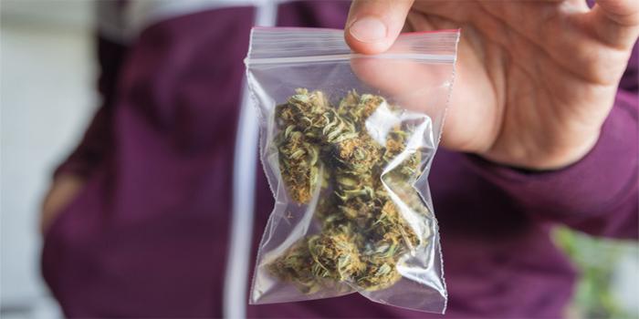 """מדיניות חדשה בצה""""ל: חיילים לא יופללו על שימוש חד-פעמי בסמים קלים"""