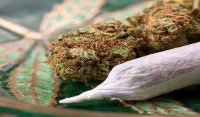 באילו מקרים ניתן למחוק רישום פלילי בעבירות סמים?