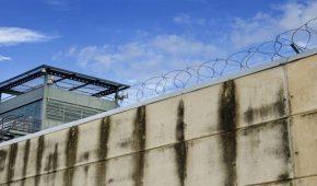 עתירות אסירים