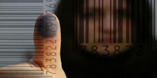 האם העסקת עובד זר בניגוד לחוק היא עבירה פלילית?