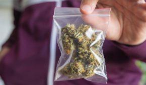 ההבדל בין החזקת סם לשימוש עצמי לבין סחר בסמים