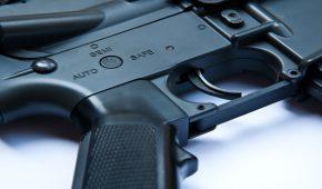 נער נאשם בגניבת רובה של אחיו