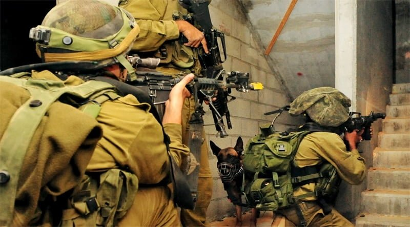 מה עונשו של חייל הגונב מהאויב בזמן מלחמה?
