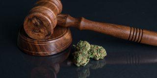 בוטלה הרשעתו של צעיר שהואשם בסחר ותיווך בסמים בזכות תהליך שיקום מוצלח