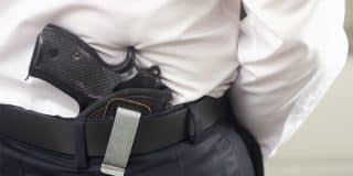 קבלת ערר על החלטת פקיד רישוי כלי ירייה והחזרת נשק ללקוח שנחשד בפדופיליה